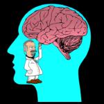 Wat veroorzaakt de chaos in je hoofd?